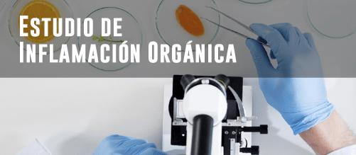 Estudios de microbiota intestinal - Estudio inflamación orgánica
