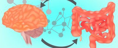 eje intestino cerebro